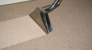 How Often Should I Clean My Carpets  Pyramid Carpets
